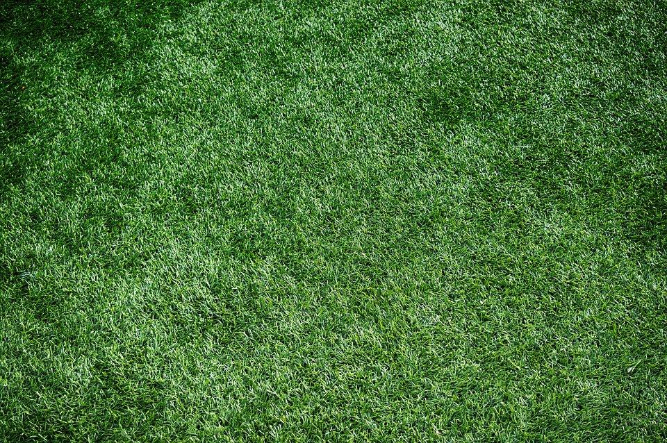 Informations pratiques pour maintenir sa pelouse artificielle en bon état
